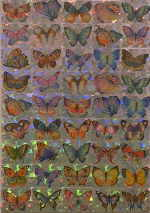 "BODNAR Eva  ""Butterfly"", 1994  sticker / canvas   29 x 21 cm     please click the image to enlarge"